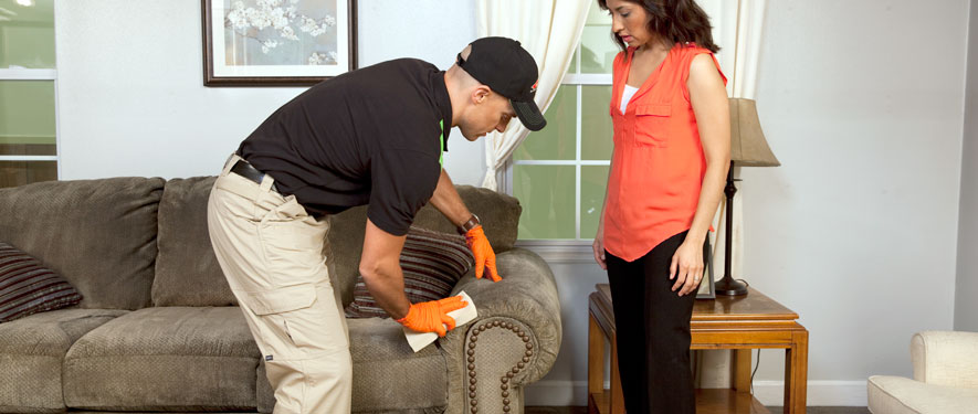 Oxford, PA carpet upholstery cleaning